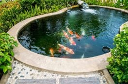 fish pond waterproofing